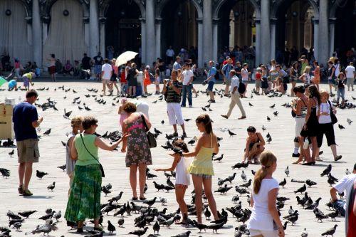 Июнь - наиболее комфортное время для отдыха в Венеции